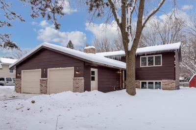 Anoka County Single Family Home For Sale: 11617 Flintwood Street NW