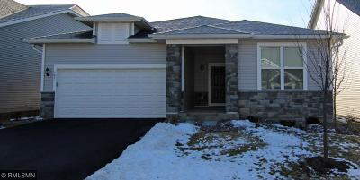Chaska Single Family Home For Sale: 545 Sweetwater Path