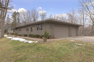Wayzata Single Family Home For Sale: 540 Far Hill Road