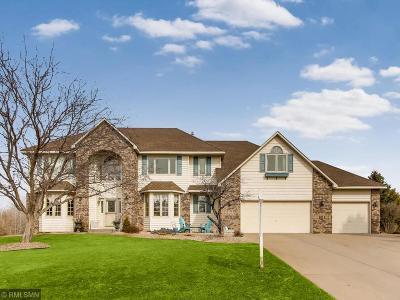 Ham Lake Single Family Home For Sale: 1117 142nd Avenue NE