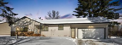 Single Family Home For Sale: 909 Park Avenue NE