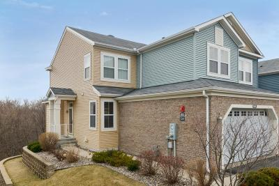 Chanhassen Condo/Townhouse For Sale: 9696 Washington Boulevard