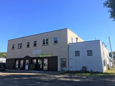 Montevideo Commercial For Sale: 120 W Canyon Avenue