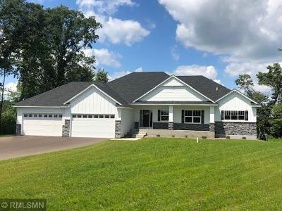 Ham Lake Single Family Home For Sale: 3955 166th Lane NE