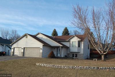 Lindstrom Single Family Home For Sale: 13330 297th Street
