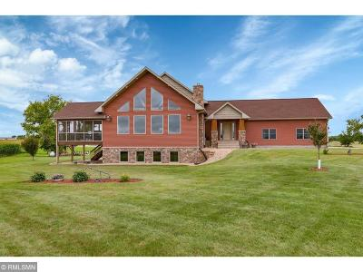 Stearns County Single Family Home For Sale: 41101 County Road 167