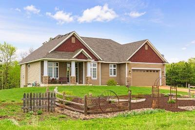 Carver County Single Family Home For Sale: 16383 Homestead Road