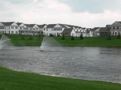 Maple Grove Condo/Townhouse For Sale: 6770 Narcissus Lane N