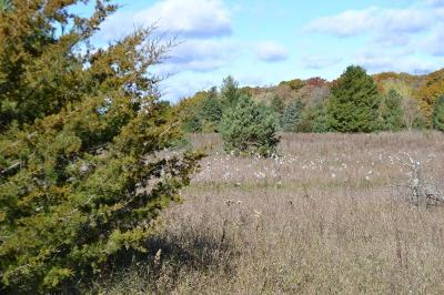 Browerville Residential Lots & Land For Sale: Xxx Parker