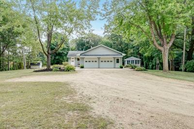 Carver County Single Family Home For Sale: 9275 Jan View Lane