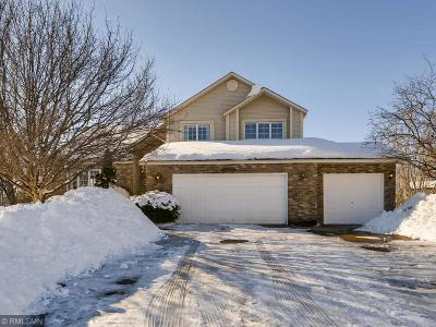 Lakeville Single Family Home For Sale: 16657 Hutchinson Drive