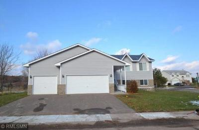 East Bethel MN Single Family Home Contingent: $234,900