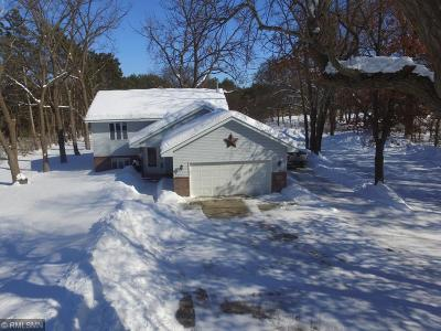 East Bethel MN Single Family Home Contingent: $249,900