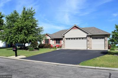 Saint Michael Single Family Home For Sale: 10130 31st Street NE