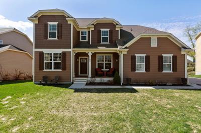 Roseville Single Family Home For Sale: 1192 Maple Lane W