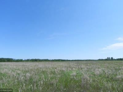 Pequot Lakes Residential Lots & Land For Sale: L6, B3 County Road 29