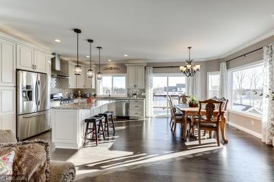Otsego Single Family Home For Sale: 14864 77th Street NE