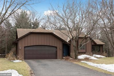 Shoreview Single Family Home For Sale: 672 White Birch Drive