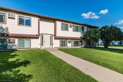 Long Prairie Commercial For Sale: 418 4th Street S #1