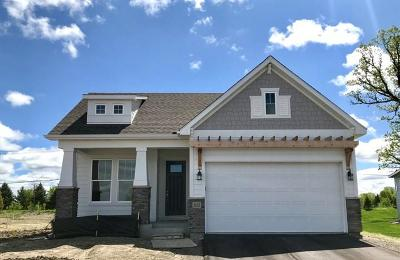 Orono Single Family Home For Sale: 2835 Goldenrod Way
