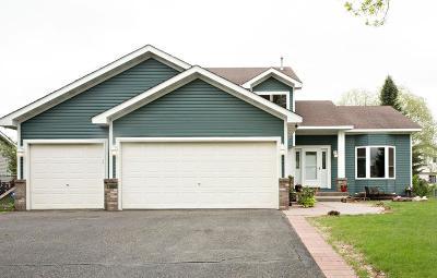 Blaine Single Family Home For Sale: 1698 126th Avenue NE