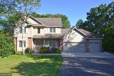Rochester Single Family Home For Sale: 580 Hastings Lane NW