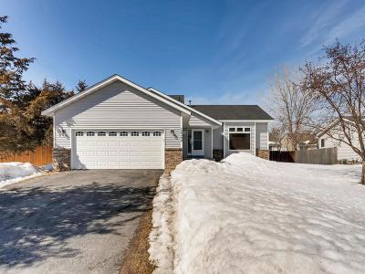 Coon Rapids Single Family Home For Sale: 12382 Zea Street NW