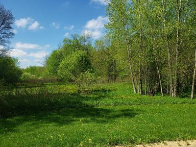 Spring Valley Residential Lots & Land For Sale: Lot 10 776th Avenue