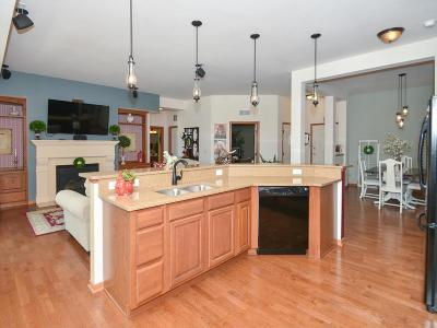 Maple Grove Condo/Townhouse For Sale: 17417 72nd Avenue N #205