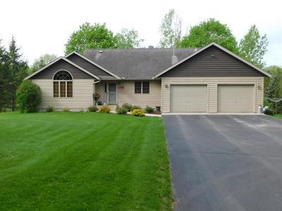 Prescott Single Family Home For Sale: W12557 695th Avenue