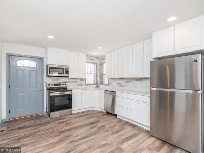 Saint Paul Single Family Home For Sale: 215 Belvidere Street E