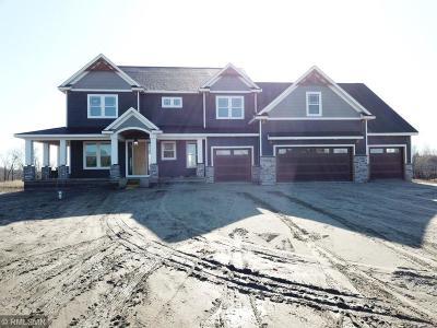 Ham Lake Single Family Home For Sale: 3337 Constance Boulevard NE