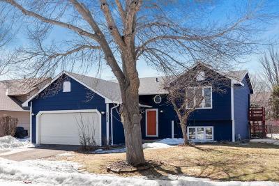 Farmington Single Family Home For Sale: 5356 184th Street W