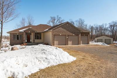Saint Francis Single Family Home For Sale: 23365 Variolite Street NW