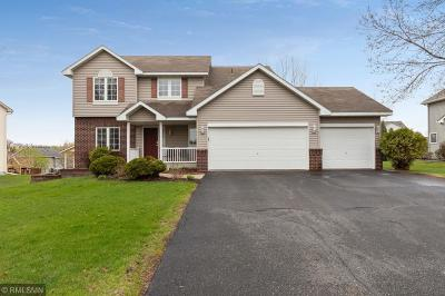 Prior Lake Single Family Home For Sale: 14379 Dove Court NE