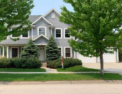 Rochester Single Family Home For Sale: 951 Fox Knoll Drive SW