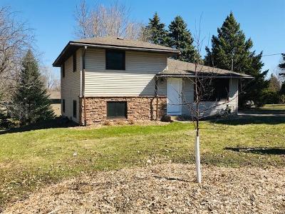 Roseville Single Family Home For Sale: 179 Grandview Avenue W