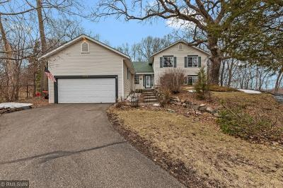 Savage Single Family Home For Sale: 4170 Hanrehan Trail
