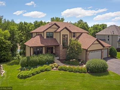 Prior Lake Single Family Home For Sale: 14079 Haas Lake Circle
