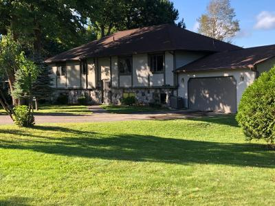 Grand Rapids Single Family Home For Sale: 33034 Crystal Spring Road