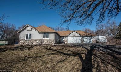 Scott County Single Family Home For Sale: 23144 Ottawa Avenue