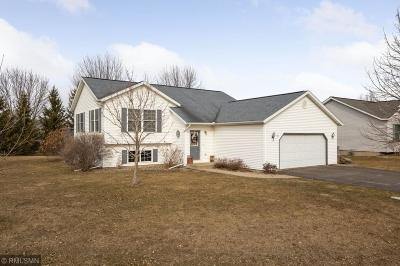 River Falls Single Family Home For Sale: 111 Sylla Street