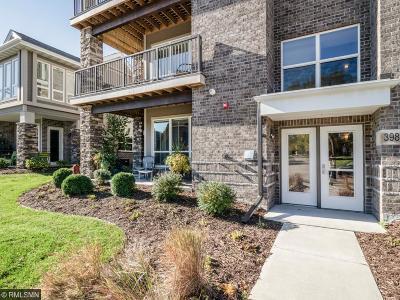 Saint Louis Park Condo/Townhouse For Sale: 3986 Wooddale Avenue S #101