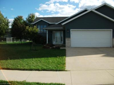 Rochester Single Family Home For Sale: 3606 48th Street NW