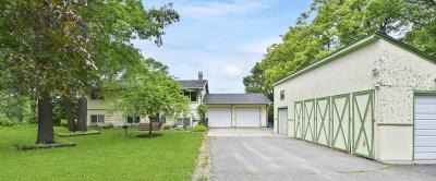 Pillager Single Family Home For Sale: 13649 E Shore Lane SW
