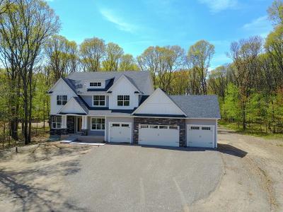 Ham Lake Single Family Home For Sale: 14248 Packard Street NE