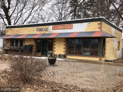 Pepin County Commercial For Sale: 415 3rd Street