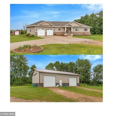 Stearns County Single Family Home For Sale: 29581 292nd Street