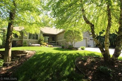 Ham Lake Single Family Home For Sale: 17023 Quincy Street NE