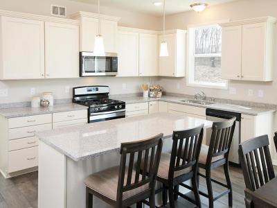 Otsego Single Family Home For Sale: 7485 Mackenzie Ave NE Street NE
